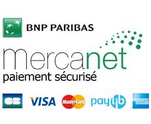 logo-bnp-paribas.jpg